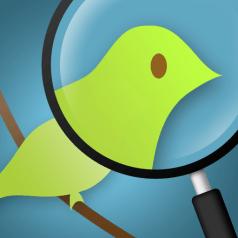 Summizer. Veille et recherche mobile sur Twitter.