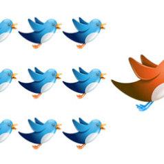 Deux outils pour verifier la qualite de vos followers sur Twitter.
