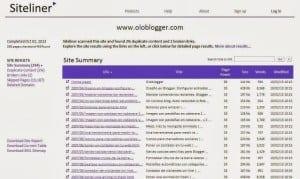 Resumé resultats siteliner